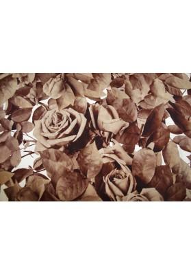Krepa jedwabna róże w brązach - 2